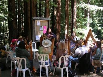 Lark camp harp class